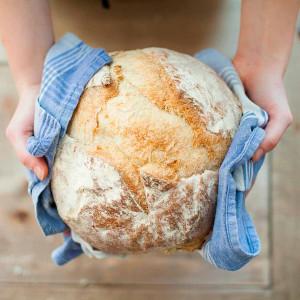 propiedades del pan